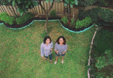 Looking Back | June 2017